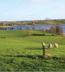 Kilcorran Lough