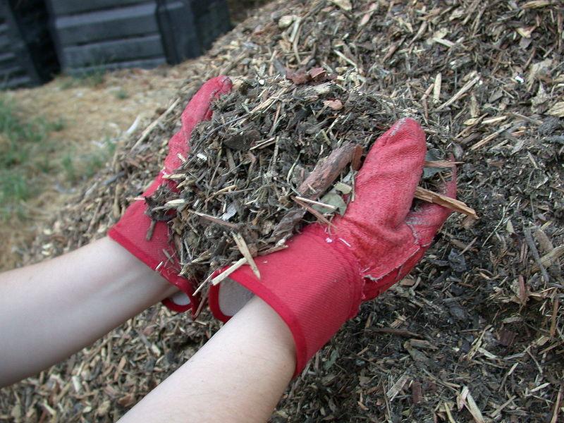 mulch - Alternatives to pesticide